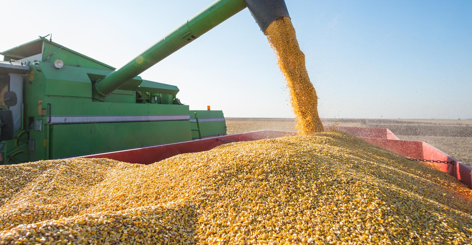 Follow these 6 rules to keep grain in condition