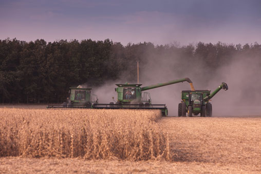 Speeding up soybean harvest operations in a narrow time window
